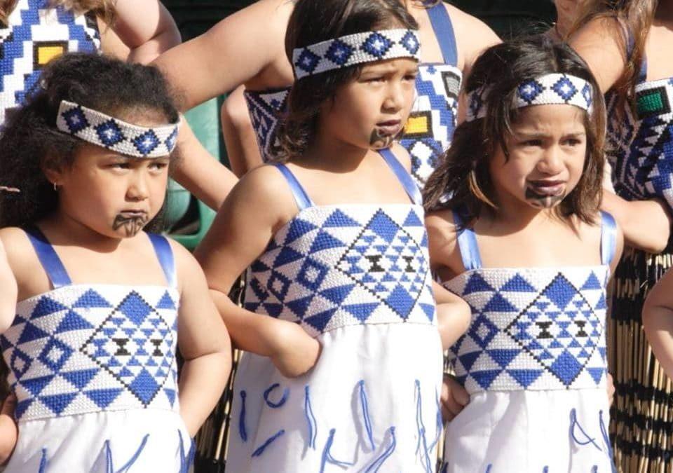 Te Kohanga School